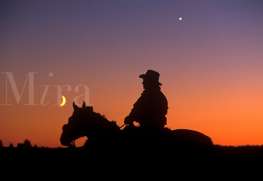 SILHOUETTE OF COWBOY WITH MOON
