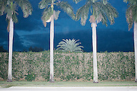 Palm trees and a hedge stand at the edge of the Trump International Golf Club Property in West Palm Beach, Florida.