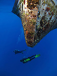 Orchid Island, Taiwan -- Divers under an old dive boat.