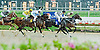 Outhaul winning at Delaware Park on 9/3/12