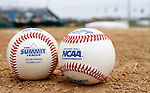 SIOUX FALLS, SD - MAY 24:  The 2014 Summit League Baseball Championship Tournament is at Sioux Falls Stadium. (Photo by Dave Eggen/Inertia)
