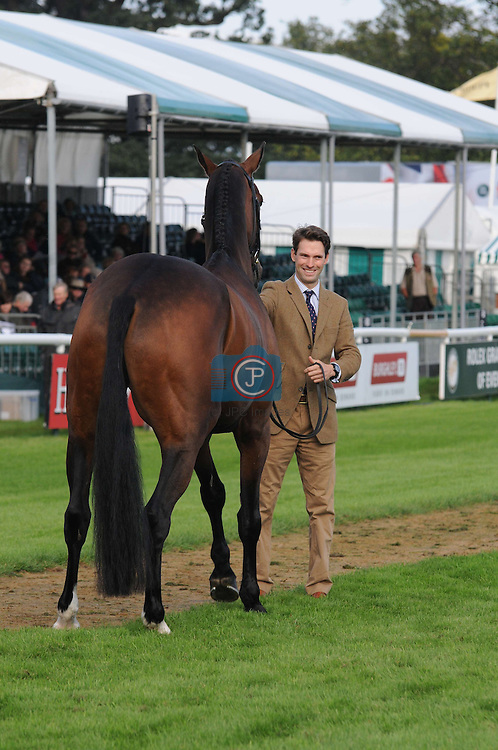 Harry meade & Wild Lone at the 1st Veterinary Inspection at the 2012 Land Rover Burghley Horse Trials in Stamford, Lincolnshire, England, UK.