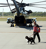 The Obama's Portuguese water dog Bo is walked by a Marine helicopter after disembarking another helicopter at Martha's Vineyard, Massachusetts Thursday, August 19, 2010. The President was not visible when he disembarked his helicopter. Michelle, Sasha, and Malia Obama landed on the island about 2 1/2 hours before the President. The Obama's are vacationing on the island August 19-29..Credit: Vincent DeWitt-Pool via CNP