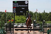 Amanda Pambianchi, Tenacity