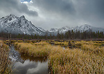 Idaho, South central, Stanley, SNRA, Fresh snow on Mt. McGown and reflected in a marsh near Stanley Lake in autumn.
