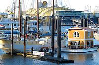 """Hausboot:DEUTSCHLAND, HAMBURG, 03.11.2005:  Hausboot , Hanseboot 2005, City Sporthafen, zwischen  """"Der Koening der Loewen und Dreimastern  der Traum vom maritimen Wohnen auf dem Wasser . Das bietet  die Firma Aqua Haus International mit einem neuen Entwurf eines """"floating house"""". ."""
