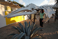pr7044-D. Gray Whale (Eschrichtius robustus) skeleton, and woman (model released). San Carlos, Baja, Mexico..Photo Copyright © Brandon Cole. All rights reserved worldwide.  www.brandoncole.com..This photo is NOT free. It is NOT in the public domain. This photo is a Copyrighted Work, registered with the US Copyright Office. .Rights to reproduction of photograph granted only upon payment in full of agreed upon licensing fee. Any use of this photo prior to such payment is an infringement of copyright and punishable by fines up to  $150,000 USD...Brandon Cole.MARINE PHOTOGRAPHY.http://www.brandoncole.com.email: brandoncole@msn.com.4917 N. Boeing Rd..Spokane Valley, WA  99206  USA.tel: 509-535-3489
