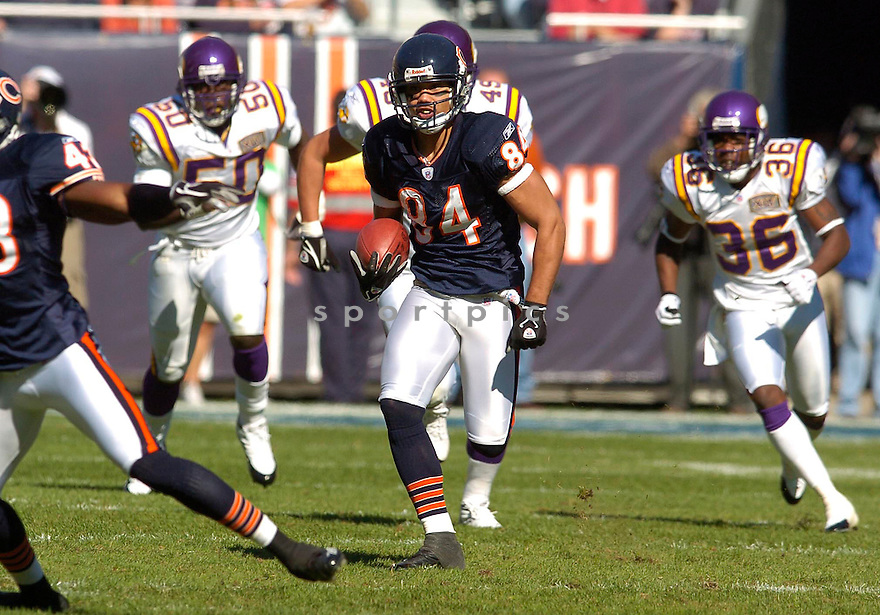 Bobby Wade, of the Chicago Bears, in action against the Minnesota Vikings during their game on October 16, 2005...Bears win 28-3..Chris Bernacchi/SportPics