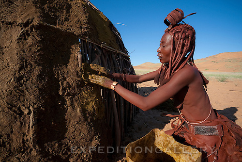 A Himba woman using cow dung to cover the wooden sticks of her traditional style hut. Himba women cover their bodies with a mixture of ochre and butter fat giving their skin and hair a reddish coloration. Himba are nomadic herders of goats and cattle, living in the dry desert regions of northwestern Namibia and southern Angola. [NO MODEL RELEASE]