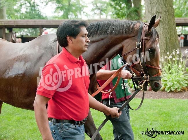 Diva Spirit before The Delaware Oaks (gr 2) at Delaware Park on 7/13/13