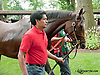 Diva Spirit before The Delaware Oaks (gr 2) at Delaware Park on 7/13/13