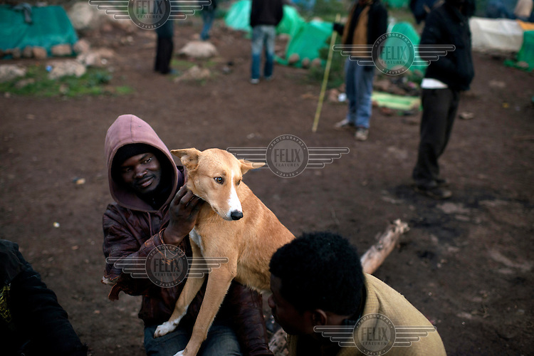 A migrant from Sub-Saharan Africa with a dog he has adopted as a pet at in camp in the Gurugu Mountains. About 1200 migrants have set up a camp there deep in a forest, hidden from the police and authorities. It is is near the Spanish exclave of Melilla and many of the migrants try to break into the city in hope of eventually finding a way to enter Europe.