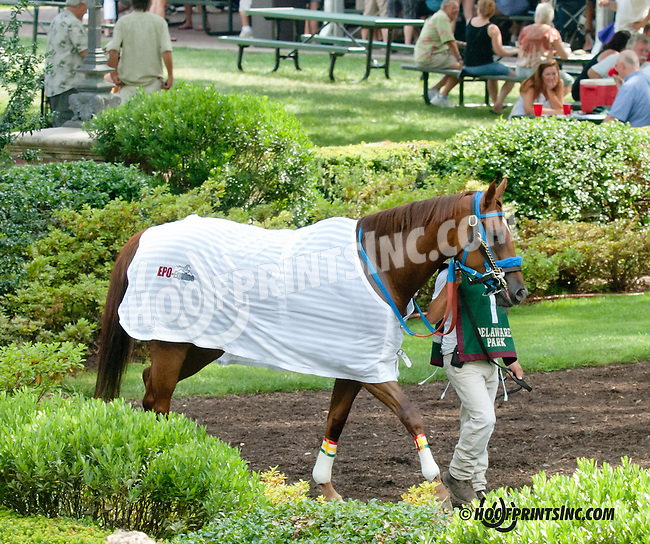 Winning Image before The Sweet and Sassy Stakes at Delaware Park on 7/20/13