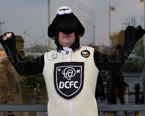 03.04.2015.  Derby, England. Skybet Championship. Derby versus Watford. Derby County fan in fancy dress before the game.
