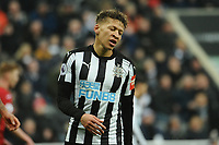 A frustrated Dwight Gayle of Newcastle United during Newcastle United vs Swansea City, Premier League Football at St. James' Park on 13th January 2018