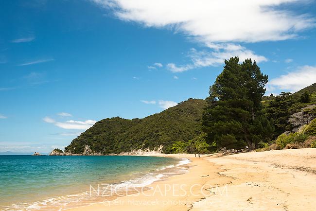 Anatakapau Bay on Abel Tasman Coast Track, Abel Tasman National Park, Nelson Region, South Island, New Zealand, NZ