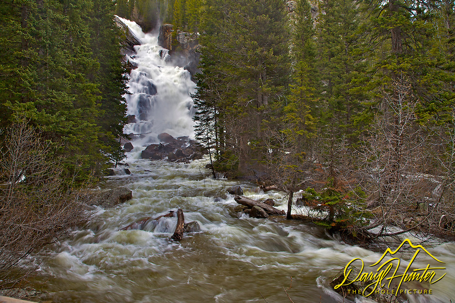 Hidden Falls, Grand Teton National Park. This is during spring runoff and you can see the creek is out of its banks. This is the destination of the most popular hike in Grand Teton National Park.