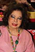 SAO PAULO, SP, 18 DE FEVEREIRO 2012 - CAMAROTE BAR BRAHMA -  A cantora Angela Maria e  vista no Camarote Bar Brahma, no primeiro dia de desfiles do Grupo Especial do Carnaval de Sao Paulo, na noite deste sabado 18, no Sambodromo do Anhembi regiao norte da capital paulista. (FOTO: MILENE CARDOSO - BRAZIL PHOTO PRESS).