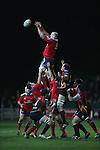 Munster lock Paul O'Connell takes the line out ball.<br /> RaboDirect Pro12<br /> Newport Gwent Dragons v Munster<br /> Rodney Parade - Newport<br /> 29.11.13<br /> &copy;Steve Pope-SPORTINGWALES