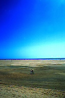 Riding a bicycle on the sands of  Moro Jable, , Fuerteventura, Canary Islands, Spain