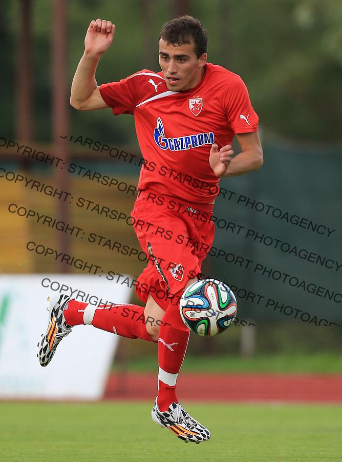 Fudbal season 2013-2014<br /> FK Crvena Zvezda pripreme<br /> Crvena Zvezda v Krka<br /> Nenad Gavric<br /> Novo Mesto, 07.12.2014.<br /> foto: Srdjan Stevanovic/Starsportphoto &copy;