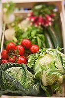 Europe/France/Bretagne/29/Finistère/Brest: Yvon Morvan restaurant: L'Armen fait son marché - lsur l'élégumes