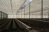 Okeechobee, Florida<br />