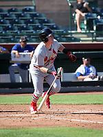 John Nogowski - Surprise Saguaros - 2017 Arizona Fall League (Bill Mitchell)