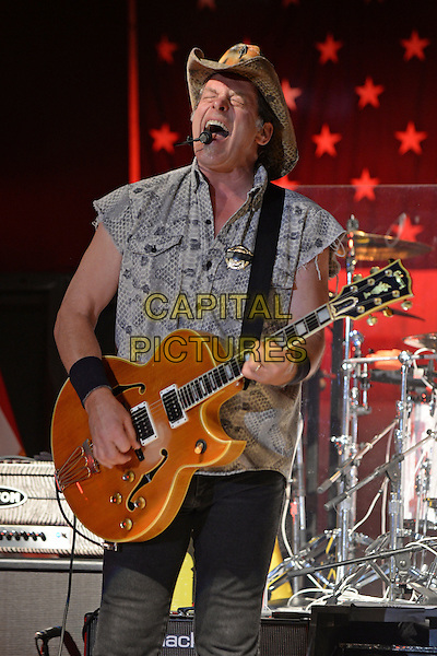 FORT LAUDERDALE FL - JULY 22: Ted Nugent performs at The Pompano Beach Amphitheater on July 22, 2016 in Fort Lauderdale, Florida. <br /> CAP/MPI04<br /> &copy;MPI04/Capital Pictures