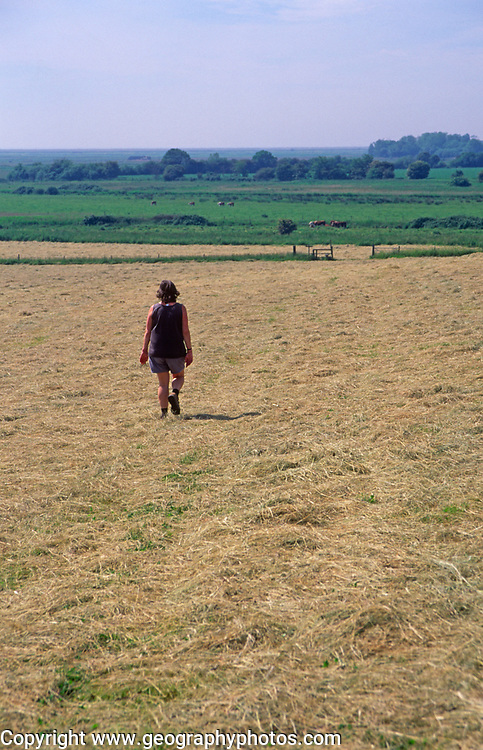 AREKJ9 Woman walking across field of freshly cut summer hay and blue sky, Burrow Hill, Suffolk, England