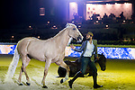 Santi Serra performs his show presented by Shanghai Tang at the Longines Masters of Hong Kong on 10 February 2017 at the Asia World Expo in Hong Kong, China. Photo by Marcio Rodrigo Machado / Power Sport Images