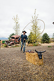USA, Nevada, Wells, guests can take advantage of Roping Lessons during their stay at Mustang Monument, A sustainable luxury eco friendly resort and preserve for wild horses, Saving America's Mustangs Foundation