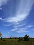 Cirrus clouds, blue sky, summer