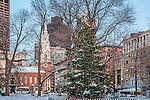 Christmas tree in Boston Common, Boston, MA
