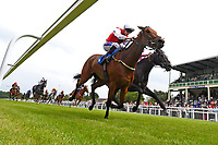 Winner of The Molson Coors Handicap (Class 6) Glamorous Dream ridden by David Probert and trained by Ronal Harris during Afternoon Racing at Salisbury Racecourse on 12th June 2018