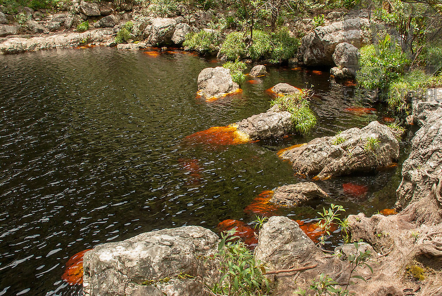 Pedras no Rio Fuma&ccedil;a na Serra da Fuma&ccedil;a | Stones in the Smoke River in the Smoke Mountain Range<br /> <br /> LOCAL: Pindoba&ccedil;u, Bahia, Brasil<br /> DATE: 09/2007<br /> &copy;Pal&ecirc; Zuppani