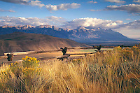 Meadow on the flats overlooking the Teton Range in Jackson Hole, WY