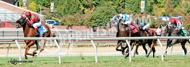 Arden Natalie winning at Delaware Park on 9/28/13