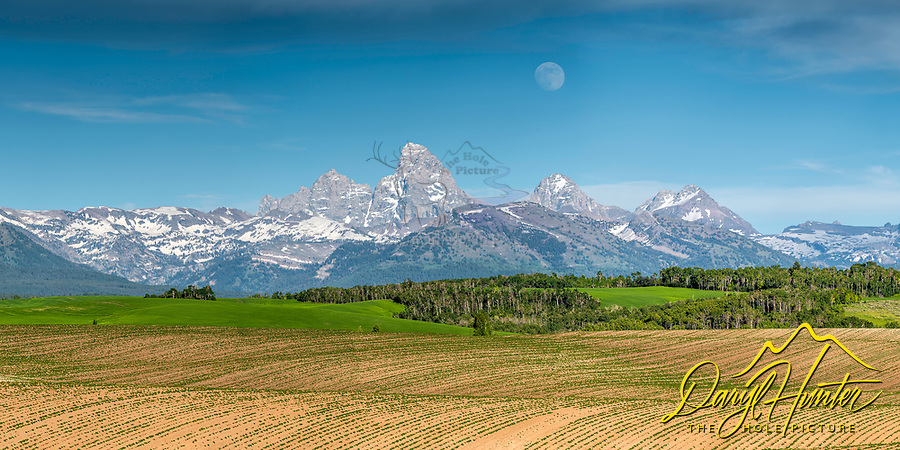 Rising moon over the Grand Tetons with the rolling hills of Teton Valley's potato farms below.