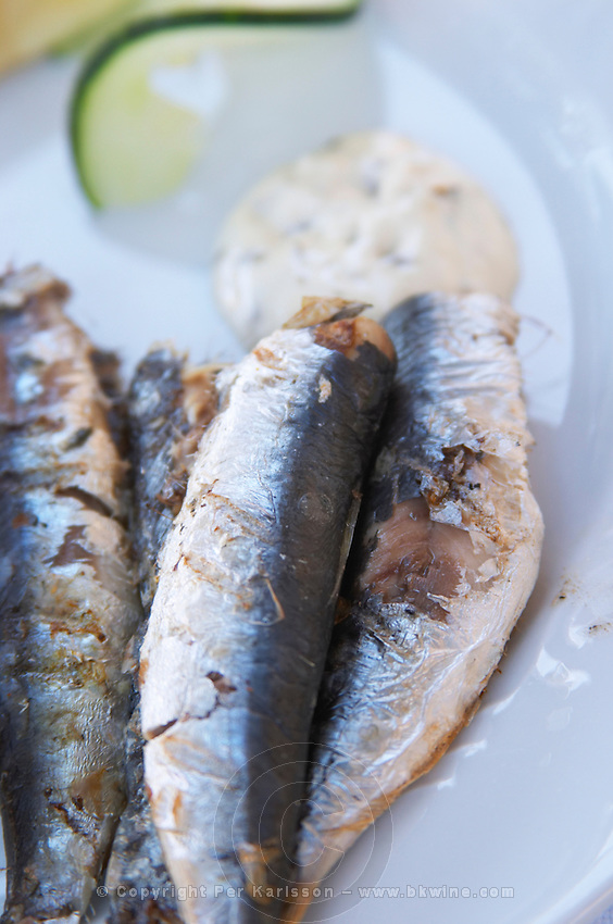 Grilled sardines on a plate. With Mayonnaise. Hotel and restaurant Kompas. Uvala Sumartin bay between Babin Kuk and Lapad peninsulas. Dubrovnik, new city. Dalmatian Coast, Croatia, Europe.