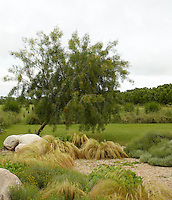 In the garden a series of gravel beds displays massed grasses and low-growing indigenous plants