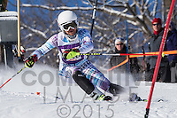 2015 Section 4 Alpine Ski Meet AM Run