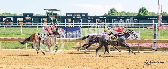 Anybodyreallyknow winning at Delaware Park on 8/25/15