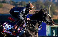 The Fugue , trained by John Gosden, trains for the Breeders' Cup Filly & Mare Turf at Santa Anita Park in Arcadia, California on October 30, 2013.
