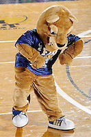 12 October 2008:  FIU mascot Roary entertains the crowd during the FIU victory 3-0 (25-18, 25-17, 25-20) over North Texas at Panther Arena in Miami, Florida.