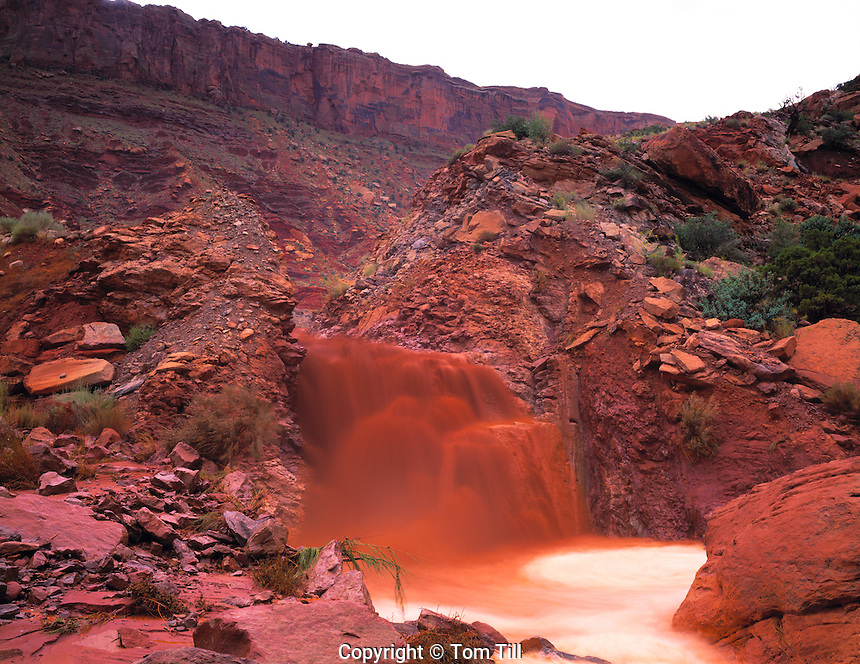 "Raging flashflood Arches National Park, Utah ""Bloody Mary"" normally dry wash After heavy summer rains  June"