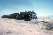 D&amp;RGW #480 and #484 ? Lead a string of tank cars toward the Alamosa refinery.<br /> D&amp;RGW  s. of Alamosa, CO