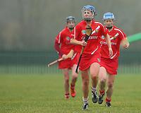 Camogie Div 1 Limerick v Cork