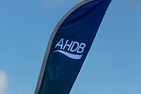 AHDB logo <br /> &copy;Tim Scrivener Photographer 07850 303986<br /> ....Covering Agriculture In The UK....