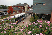 Buses line the transit city station in Charlottesville, VA. Photo/ Andrew Shurtleff